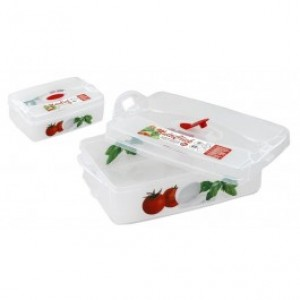 Snips Rectangular container Frigo click to preserve the Comida Fresca